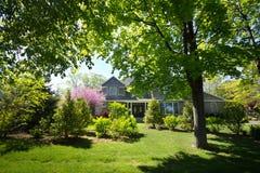 Haus umgeben von Trees Lizenzfreies Stockbild