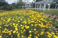 Haus und Gärten der Boone Hall Plantage lizenzfreie stockfotos