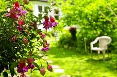 Haus und Garten lizenzfreie stockfotografie