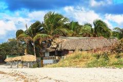 Haus und Palme Lizenzfreies Stockfoto