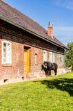 Haus und Pferd Stockfotos