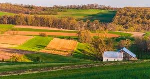 Haus und Scheune auf den Bauernhoffeldern und der Rolling Hills von Süd-York County, PA Stockfotos
