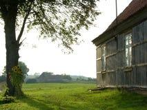 Haus und Sonnenblumen Lizenzfreies Stockfoto