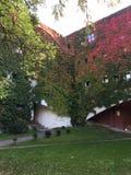 Haus von Rosen Lizenzfreies Stockfoto