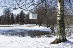 Haus-Zufuhr, die von einem Baum hängt Lizenzfreie Stockfotografie