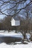 Haus-Zufuhr, die von einem Baum hängt Stockfoto