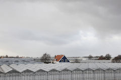 Haus zwischen Gewächshäusern Lizenzfreie Stockfotos
