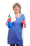 Hausfrau, die Frühjahrsputz tut Lizenzfreie Stockfotografie