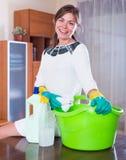 Hausfrau mit dem regelmäßigem Polieren des Sprays und des Lappens Lizenzfreie Stockfotos