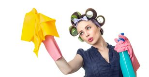Hausfrau mit Lappen lizenzfreies stockbild