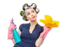 Hausfrau mit Lappen stockbilder