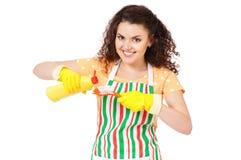 Hausfrau mit Reinigungszubehör Stockfoto