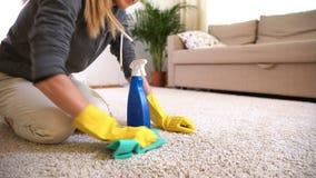 Hausfrau säubert den Teppich mit speziellem Reinigungsmittel stock video footage