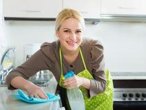 Hausfraureinigungsmöbel in der Küche Stockfotos