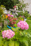 Hausgarten in der Blüte Stockbilder