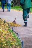 Hausmeister fegt die gefallenen gelben Blätter im Park stockfotografie