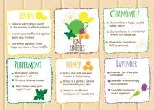 Hausmittel infographics Natürliche Heiler, natürliche selbst gemachte Heilungen Autonomierezepte mit Früchten und herbals stock abbildung
