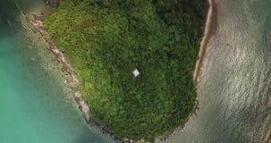 Hausse au-dessus de la position de phare sur le cap dans la forêt tropicale sauvage banque de vidéos