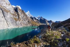 Hausse au Pérou Photographie stock