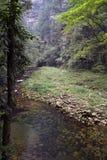 Hausse autour du parc dans la région scénique de Wulingyuan Novices chaque Images libres de droits