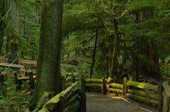 Hausse d'île de Vancouver images libres de droits