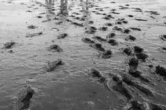 Hausse d'appartement de boue photographie stock libre de droits