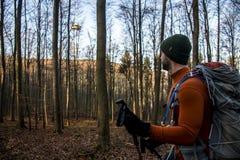 Hausse dans le bois sur une nature de jour ensoleillé Photo libre de droits