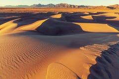 Hausse dans le désert Images libres de droits