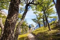 Hausse dans le Patagonia photos stock