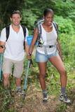 Hausse de couples Image stock