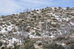 Hausse de la région sauvage de montagne de granit Image libre de droits