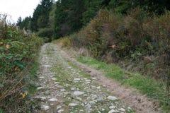 Hausse de la route Image libre de droits
