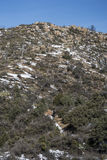 Hausse de la traînée de montagne de granit Photographie stock