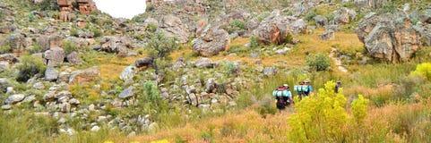 Hausse de montagne de Cedarberg Images libres de droits