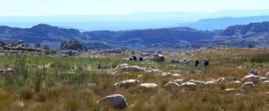 Hausse de montagne de Cedarberg Photos libres de droits