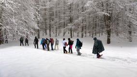 Hausse de raquette sur le chemin neigeux de montagne Arbres dans le backgroun Images stock