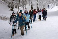Hausse de raquette sur le chemin neigeux de montagne Arbres dans le backgroun Photo libre de droits