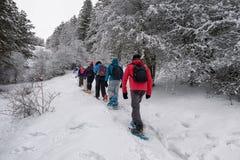 Hausse de raquette sur le chemin neigeux de montagne Arbres dans le backgroun Photographie stock