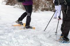 Hausse de raquette sur le chemin neigeux de montagne Promenade sur la neige fraîche Photo stock