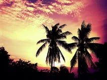Hausse de Sun Images stock