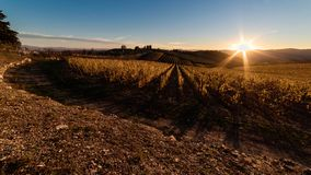 Hausse de Sun sur les vignobles du chianti image stock