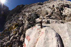 Hausse de Zugspitze Photographie stock libre de droits