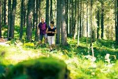 Hausse des aînés dans la forêt Photos stock
