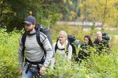 Hausse des amis marchant parmi des usines dans la forêt Photographie stock libre de droits