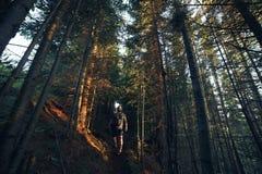 Hausse des aventures de seul photographe d'homme dans la forêt de soirée image stock