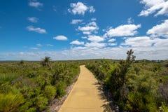 Hausse du chemin à travers le beau paysage vert dans l'Australie occidentale à la réserve naturelle de Nilgen photos libres de droits