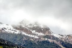 Hausse du chemin dans les alpes juliennes Photographie stock libre de droits