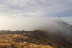 Hausse du parc national Nouvelle-Zélande de Paparoa Photographie stock
