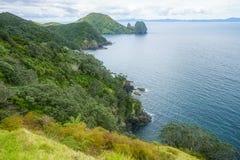 Hausse du passage couvert côtier de Coromandel, le Nouvelle-Zélande 20 Photos libres de droits