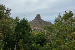 Hausse du voyage dans les montagnes d'Anaga près de Taborno sur l'île de Ténérife Photo libre de droits